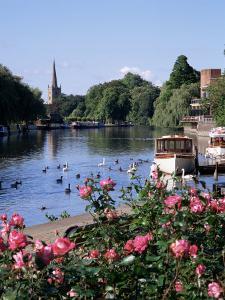 Stratford-Upon-Avon, Warwickshire, England, United Kingdom by Roy Rainford
