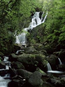 Torc Waterfall, Killarney, County Kerry, Munster, Eire (Republic of Ireland) by Roy Rainford