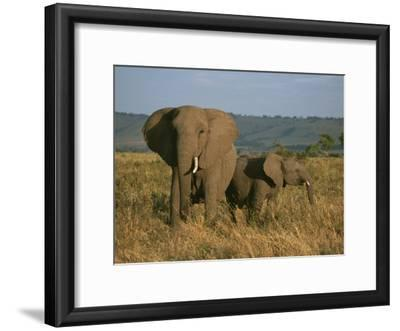 A Female Elephant with Her Baby on a Masai Mara Plain