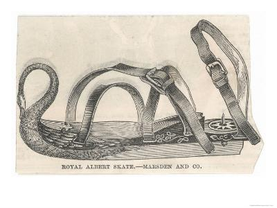 Royal Albert Skate by Marsden and Company--Giclee Print