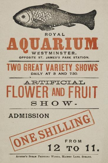 Royal Aquarium, Westminster ... Two Great Variety Shows Daily ... Artificial Flower and Fruit Show--Giclee Print