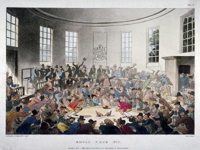 Royal Cock Pit, 1808-Augustus Charles Pugin-Giclee Print