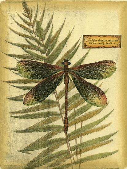 Royal Dragonflies IV--Art Print