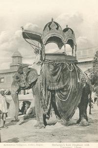 Royal Elephant with Howdah, India