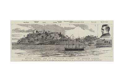 Royal Island, One of the Salut Islands, Off French Guiana--Giclee Print
