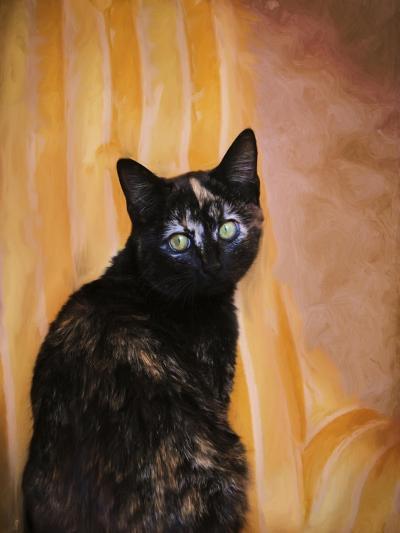 Royal Kitten-Jai Johnson-Giclee Print