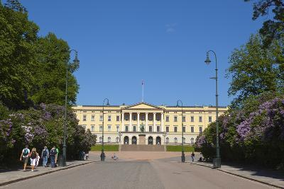 Royal Palace (Slottet), Oslo, Norway, Scandinavia, Europe-Doug Pearson-Photographic Print