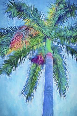 https://imgc.artprintimages.com/img/print/royal-palm-caribbean-i_u-l-q1bl5nd0.jpg?p=0