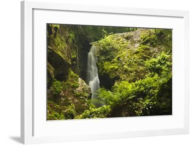 Royalston Falls in Royalston, Massachusetts. Falls Brook-Jerry & Marcy Monkman-Framed Photographic Print