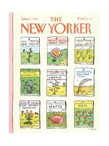 The New Yorker Cover - June 1, 1987 by Roz Chast