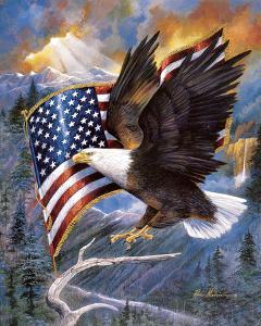 America'S Pride by Ruane Manning