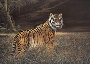 Splendor in the Grass by Ruane Manning