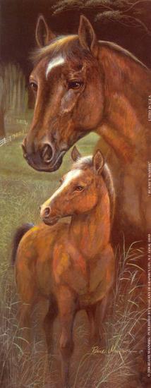 Ruane's Mariah-Ruane Manning-Art Print