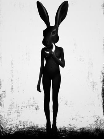 Lepus by Ruben Ireland