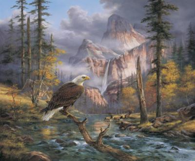 Eagles Perch by Rudi Reichardt