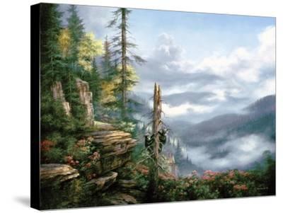 Smoky Mountains by Rudi Reichardt
