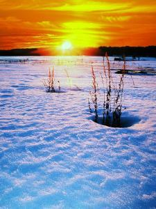 Catskills, Ny, Snow Sunset by Rudi Von Briel