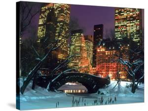 NYC, Central Park Snow and Plaza Hotel by Rudi Von Briel