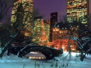 NYC, Central Park Snow and Plaza Hotel by Rudi Von Briel