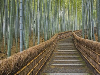 Bamboo Lined Path at Adashino Nembutsu-ji Temple by Rudy Sulgan