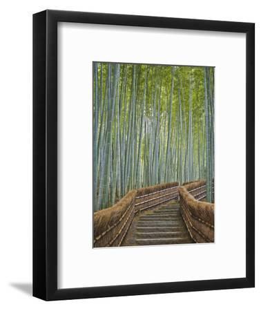 Bamboo Lined Path at Adashino Nembutsu-ji Temple