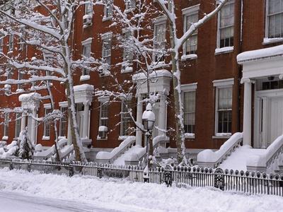 Brownstones in Blizzard