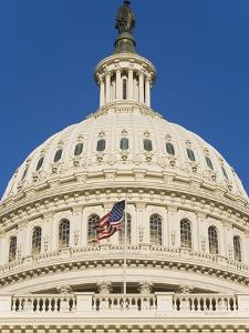 Capitol Building and Flag by Rudy Sulgan