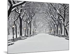 Central Park in Winter by Rudy Sulgan