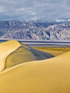 Sand Dunes in Death Valley by Rudy Sulgan