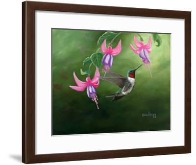Rufous and Fuchsias-Julie Peterson-Framed Art Print