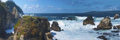 Rugged Coast in Point Lobos State Park, CAlifornia-Anna Miller-Photographic Print