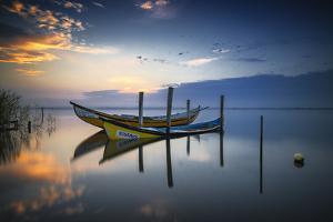 The Boats by Rui Ribeiro