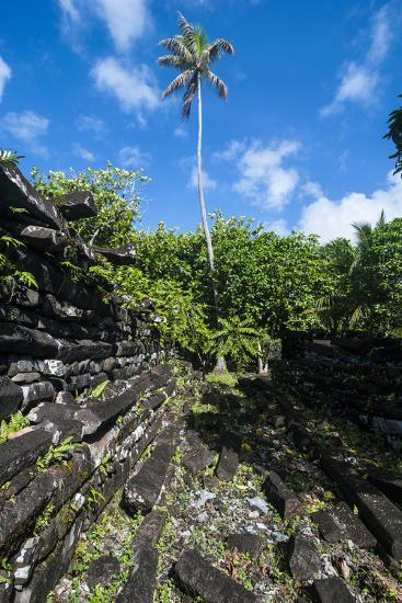 Ruined City Nan Madol, Pohnpei, Micronesia, Central Pacific-Michael Runkel-Photographic Print