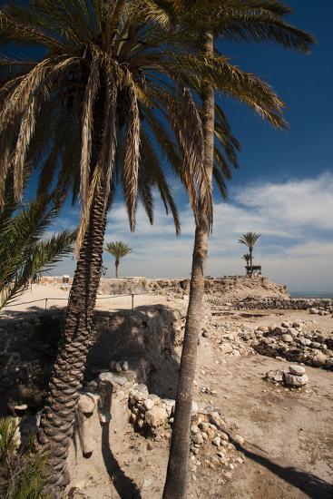 Ruins of ancient city, Megiddo National Park, Megiddo, North Coast, Israel--Photographic Print