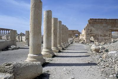 Ruins of Colonnade in Palmyra--Photographic Print