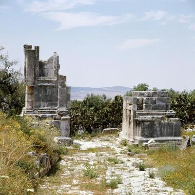 https://imgc.artprintimages.com/img/print/ruins-of-dougga-a-small-roman-town-in-north-africa-which-flourished-in-the-2nd-3rd-centuries-ad_u-l-q1fpke60.jpg?p=0