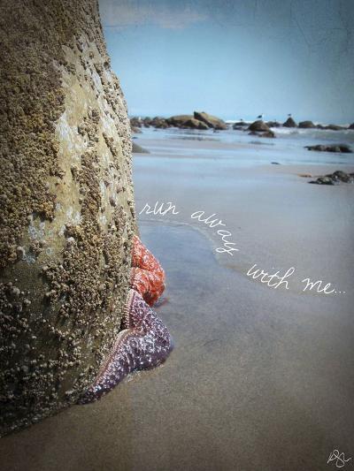 Run Away with Me-Kimberly Glover-Giclee Print