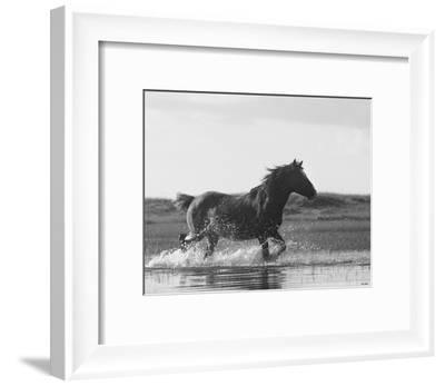 Run Like the Wind-Eve Turek-Framed Art Print