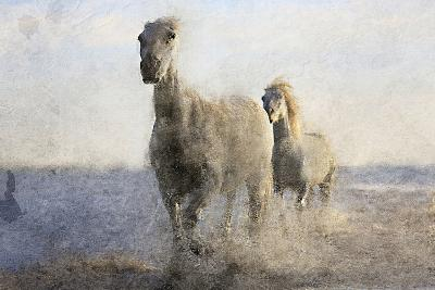 Running Free-Kimberly Allen-Art Print