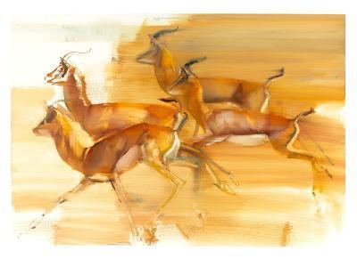 Running Gazelles, 2010-Mark Adlington-Giclee Print