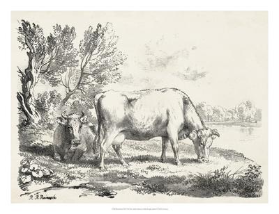https://imgc.artprintimages.com/img/print/rural-charms-iii_u-l-f8swpl0.jpg?p=0