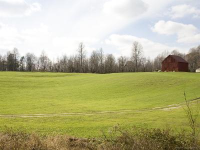 Rural Farmlands Provide a Scenic View-Stephen St^ John-Photographic Print