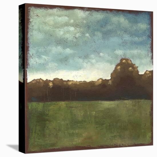 Rural Retreat VII-Chariklia Zarris-Stretched Canvas Print