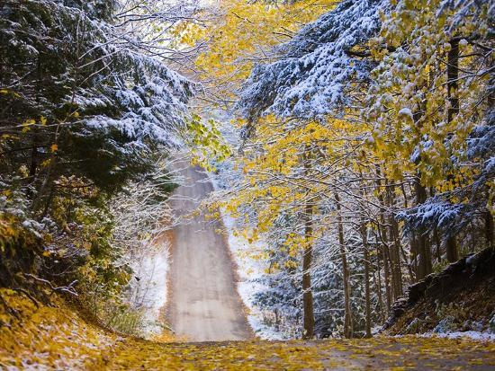 Rural road after snow-Jim Craigmyle-Photographic Print