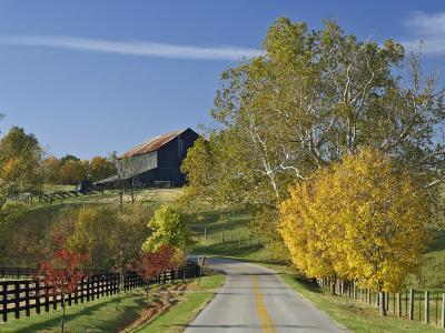 Rural Road Through Bluegrass in Autumn Near Lexington, Kentucky, USA-Adam Jones-Photographic Print