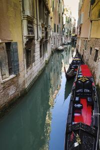 Gondolas and canal, Venice, Veneto, Italy by Russ Bishop
