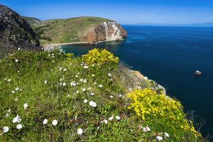 Hiking at Scorpion Ranch, Santa Cruz Island, Channel Islands National Park, California, USA by Russ Bishop