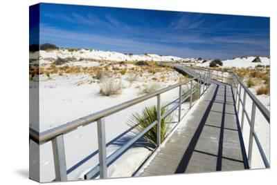 Interpretive Boardwalk, White Sands National Monument, New Mexico, Usa