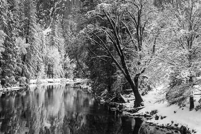 Merced River and Cathedral Rock in winter, Yosemite National Park, California, USA