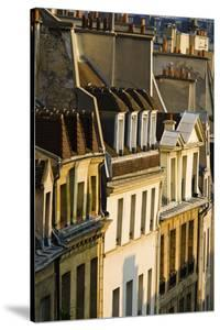 Morning Light on Houses in the Latin Quarter, Paris, France by Russ Bishop